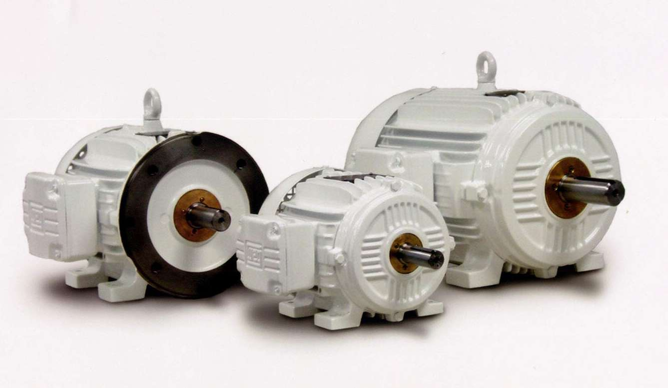 Whitfield Electric Motors Providing Over 40 Years Of